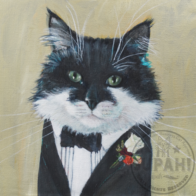 Sylvester, a Highly Professional Groomsman Cat