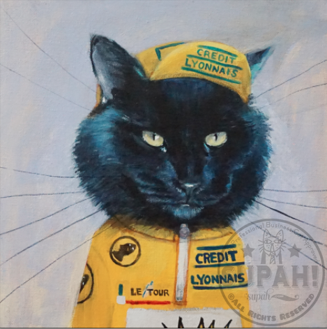 Brother, a Highly Professional Cyclist Cat